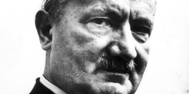 Heidegger und seine ns verstrickungen kein einzelfall bild imago