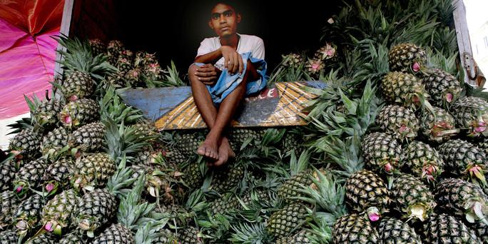 die folgen der agrarindustrie wie die ananas costa rica ruiniert. Black Bedroom Furniture Sets. Home Design Ideas
